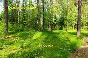 Прекрасный участок 40 соток в п. Кузьмоловский - Фото 1