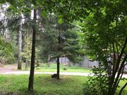 Эксклюзив 15 сот. с лесными деревьями, Ново-Александрово, 7 км от МКАД - Фото 1