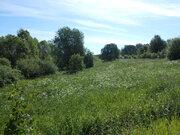 Продажа земельного участка 1,2 га в Валдайском районе, д. Борисово - Фото 5
