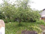 Участок с домом в деревне Глухово - Фото 3