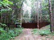 Живописный лесной участок 30 соток на Рублевке.