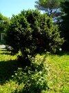 Продажа участка, Пионерский, пионерский Р-Н степной - Фото 2