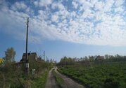 Пос.Филино, СНТ Рощино-Калининград, 6 сот, собств, 150м до моря - Фото 3