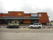 Продажа псн 600 кв.м. на участке 30 соток в Алексине