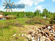 Участок 50 соток в деревне Тишнево Боровского района - Фото 3