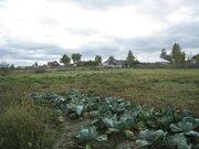 Продам земельный участок с домом в с.Панино - Фото 2