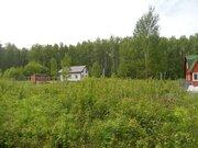 Дачный участок 8 соток в СНТ Язовка - Фото 3