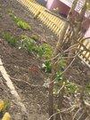 1 700 000 Руб., 2 х комнатная с ремонтом, Купить квартиру в Смоленске по недорогой цене, ID объекта - 319178941 - Фото 9
