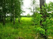 Алтай, Первомайский район, п.Лесной - Фото 3