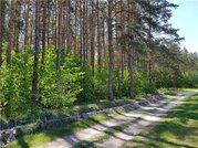 Земельные участки в Брянской области