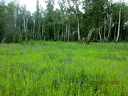 Земельный участок в Долгодеревеском Сосновского района - Фото 1