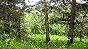 Земельный участок на реке Ить, район д. Нестерово. - Фото 3