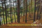 Гатчинский район, д.Сиверская,18.4 сот. ИЖС - Фото 3