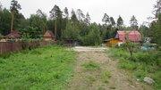 Продается земельный участок в СНТ Корела Приозерского района - Фото 3