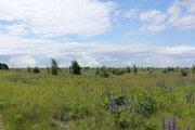 Участок в Гдовском районе, Земельные участки Ветвеник, Гдовский район, ID объекта - 201324440 - Фото 6