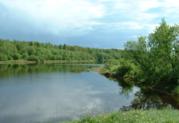 Участок 180 соток п.Кобралово Гатчинский р-он - Фото 3