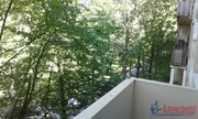 Продам 2к. квартиру. Ушинского ул., Купить квартиру в Санкт-Петербурге по недорогой цене, ID объекта - 320391762 - Фото 9
