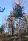 Участок в п.Изумрудный (ровный!) - Фото 1