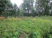 Продается земельный участок в д. Варищи Озерского района МО - Фото 4