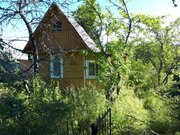 Продам дачу 60 кв.м, сад-во Мшинское - Фото 5
