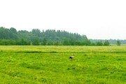 Продам участок 38 соток ИЖС дёшево!, Земельные участки Тяглино, Гатчинский район, ID объекта - 201475535 - Фото 1
