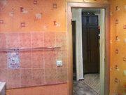 2-к квартира ул. 80 Гвардейской Дивизии, 64, Купить квартиру в Барнауле по недорогой цене, ID объекта - 322094897 - Фото 8