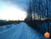Продается участок, Дмитровское шоссе, 45 км от МКАД - Фото 3