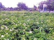200 000 Руб., Дача в Ялуторовске в отличном районе, Дачи в Ялуторовске, ID объекта - 502651231 - Фото 4