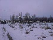 Ленинградское ш. 75 км от МКАД, Решоткино, Участок 30 сот. - Фото 3