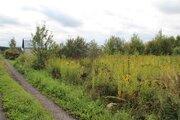 Продается земельный участок рядом с д. Степково, СНТ Надежда. - Фото 4