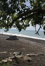 15 000 000 Руб., Продается вилла на берегу моря, Продажа домов и коттеджей Сухум, Абхазия, ID объекта - 504490953 - Фото 8