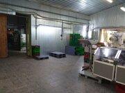 500 Руб., Помещение под пищевое производство, Аренда производственных помещений в Подольске, ID объекта - 900555374 - Фото 3