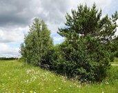 Срочно продаю красивейший участок 80 сот. в деревне М.Шимоново - Фото 2