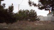 Земельный участок с соснами на Фиоленте - Фото 3