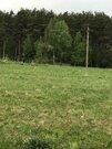 30 соток ЛПХ рядом с сосновым лесом - Фото 1