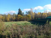 Участок, Горьковское ш, 84 км от МКАД, Головино, в деревне. Прилесной . - Фото 1