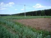 15 сот ИЖС в дер.Ратьково - 65 км Щёлковское шоссе - Фото 3