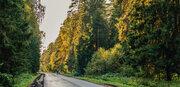 Дом на берегу Пироговского водохранилища., Купить дом Чиверево, Мытищинский район, ID объекта - 503016847 - Фото 29