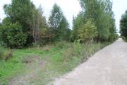Продается земельный участок 49 соток в деревне Малинники. - Фото 1