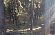 Участок в курортной зоне Архыза, Земельные участки в Карачаевском районе, ID объекта - 201071690 - Фото 3