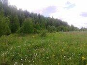 Продается земельный участок в Солнечногорском районе д Повадино - Фото 5