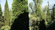 Половина 3 ккв в цетральной части Ялты, Купить комнату в квартире Ялты недорого, ID объекта - 700764836 - Фото 3