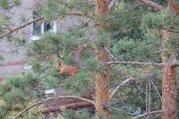 7 000 Руб., Коттедж в розовке на сутки, Дома и коттеджи на сутки Розовка, Омский район, ID объекта - 502356268 - Фото 30