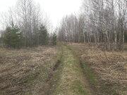 Земельный участок в д.Низкое Егорьевский район - Фото 5