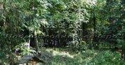 Рублево-Успенское ш. 19 км от МКАД, Таганьково, Участок 32 сот.