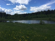 Участок в деревне возле леса и рядом с озером - Фото 1