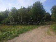 Продажа участка, Бригадное, Приозерский район - Фото 5