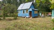 Участок в сосновом лесу с небольшим домиком 50 км от МКАД - Фото 2