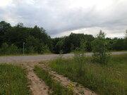 Продажа участка, Русыня, Батецкий район, Д. Русыня - Фото 4