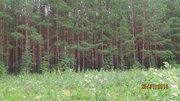 Земельный участок в 50 км от Екатеринбурга - Фото 3